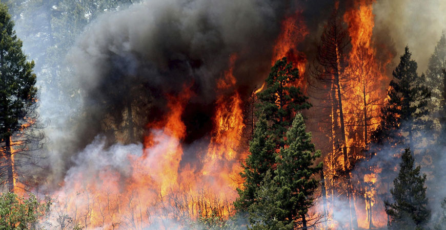 The 4 Colorado Wildfires near Pike's Route